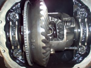 Rear Differential Gears