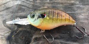 Lure Me In Crankbaits Crankbait Review